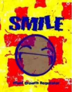 smile 3g