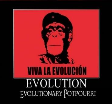 Evolution Räuchermischung