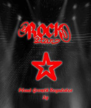 Raeuchermischung Rock Star
