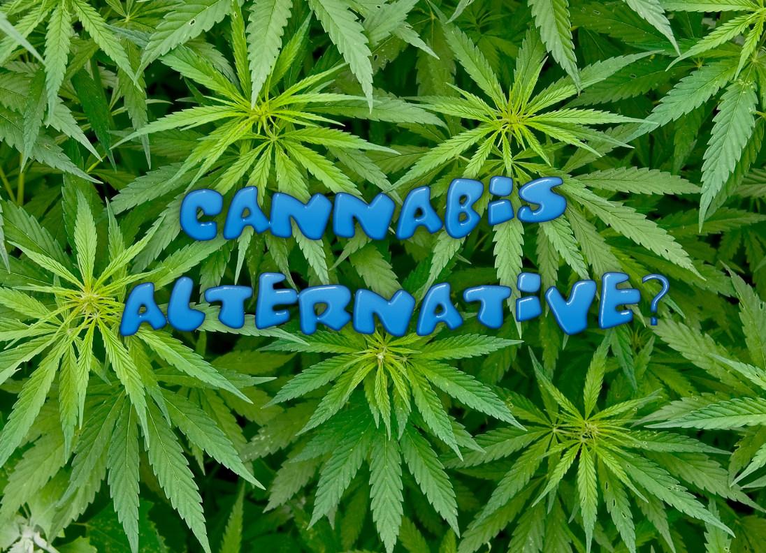 Cannabis Alternative