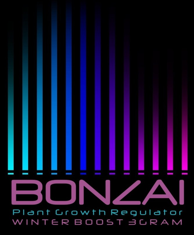 Räuchermischung Bonazi Winter Boost
