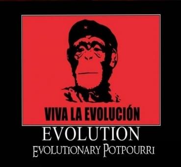 Evolution Räuchermischung