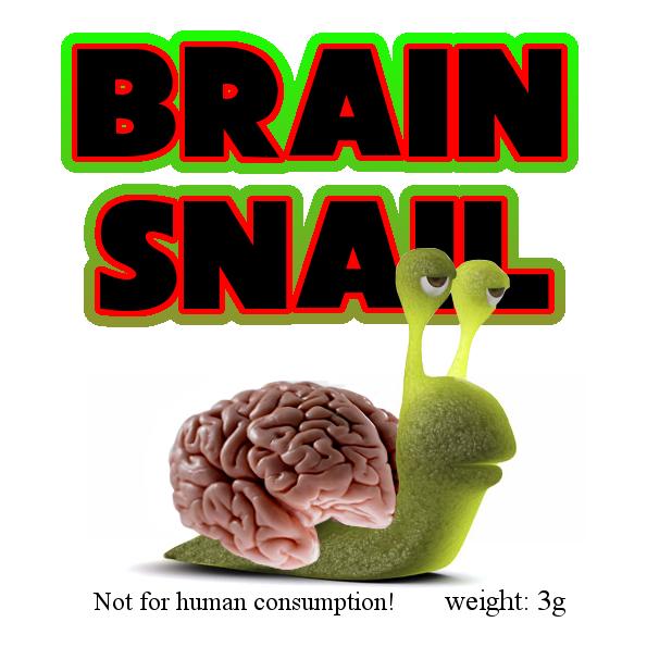 Brain Snail 3g Kraeutermischung